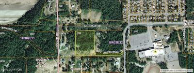 Palmer Residential Lots & Land For Sale: 12327 Palmer Moose Avenue