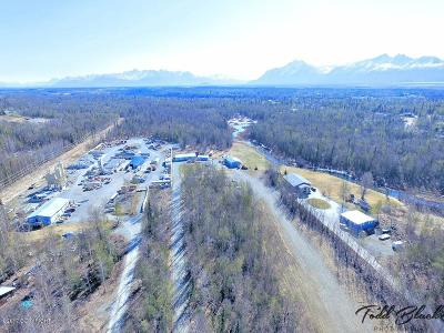Wasilla Single Family Home For Sale: B029 S Knik Goose Bay Road