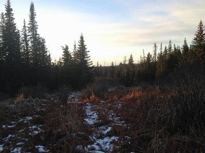 Homer AK Residential Lots & Land For Sale: $22,000