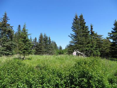 Ninilchik Residential Lots & Land For Sale: 17901 Arcturus Loop