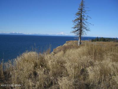 1b - Kenai Peninsula Borough Residential Lots & Land For Sale: Danver Street