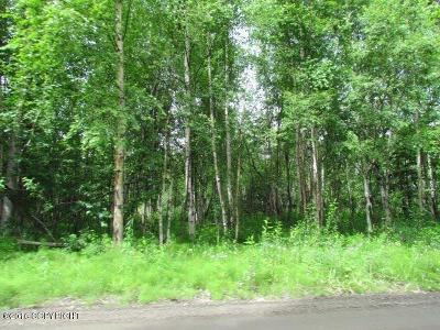 Wasilla Residential Lots & Land For Sale: 2011 Lake Lucille Drive