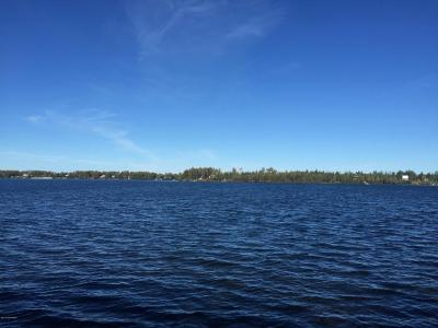 Big Lake Residential Lots & Land For Sale: 1155 Horseshoe Lake Road