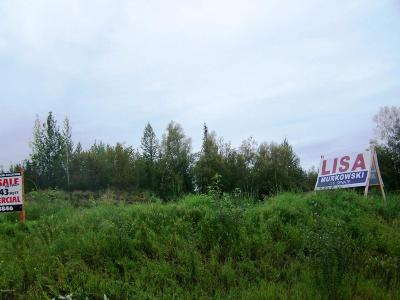 Palmer Residential Lots & Land For Sale: 1845 Monte Vista Drive