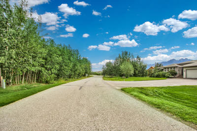 Wasilla Residential Lots & Land For Sale: 5749 Morning Mist Drive