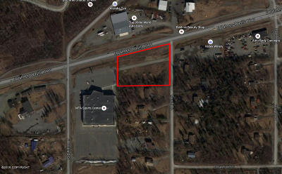 1d - Matanuska Susitna Borough Residential Lots & Land For Sale: 1660 Ranch Road