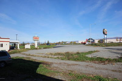 Wasilla AK Commercial For Sale: $950,000