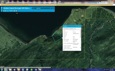 Remote AK Residential Lots & Land For Sale: $40,000