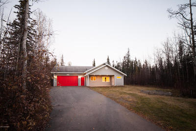 Wasilla Single Family Home For Sale: 6780 W Blondell Drive