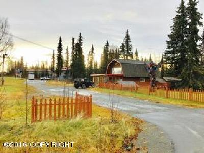 Kenai Commercial For Sale: 5743 Kenai Spur Highway