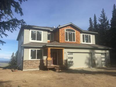 Anchorage Single Family Home For Sale: L2 B3 Potter Valley Road