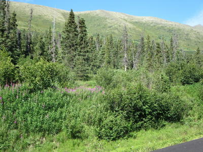 Eagle River Residential Lots & Land For Sale: L2 B1 West River Drive