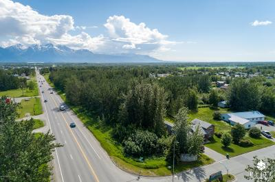 Residential Lots & Land For Sale: Tract 4 Glenn Highway