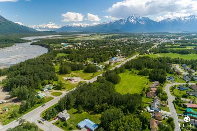 Residential Lots & Land For Sale: Tract 5 Glenn Highway