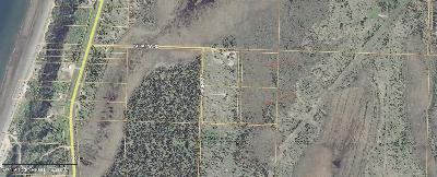 Anchor Point Residential Lots & Land For Sale: L2-3 Chopp Street