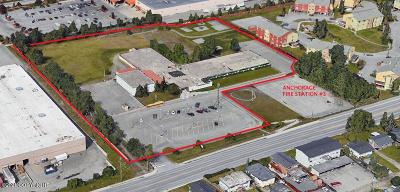 Anchorage Commercial For Sale: 550 Bragaw Street