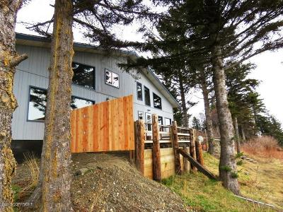 Homer AK Single Family Home For Sale: $310,000