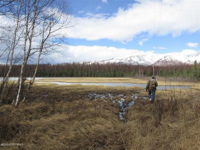 Wasilla Residential Lots & Land For Sale: 3025 Pamela Drive