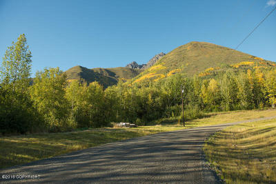 Anchorage, Chugiak, Eagle River Residential Lots & Land For Sale: Lot 2 Twin Peaks Drive
