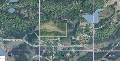 Wasilla Residential Lots & Land For Sale: C003 Blue Goose Road