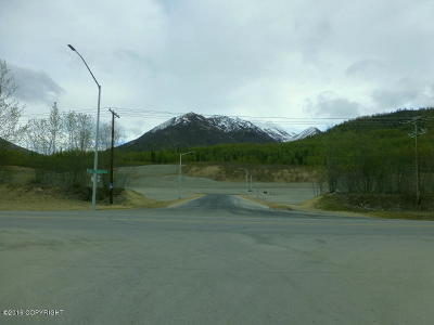 1a - Anchorage Municipality Residential Lots & Land For Sale: L2 Transport Circle