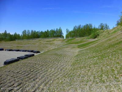 1a - Anchorage Municipality Residential Lots & Land For Sale: TR A-1 Skyview Avenue