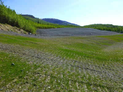 1a - Anchorage Municipality Residential Lots & Land For Sale: TR A-2 Transport Circle