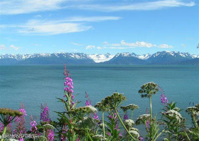 1b - Kenai Peninsula Borough Residential Lots & Land For Sale: 3475 Kachemak Drive