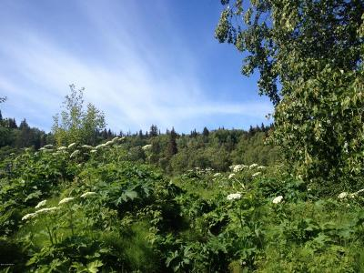 Homer AK Residential Lots & Land For Sale: $59,000
