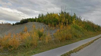 Palmer Residential Lots & Land For Sale: 8901 Palmer-Wasilla Highway