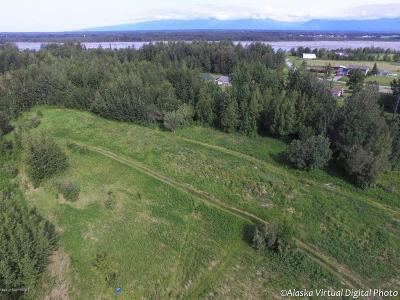 Palmer Residential Lots & Land For Sale: 3320 Jessie Jo Place