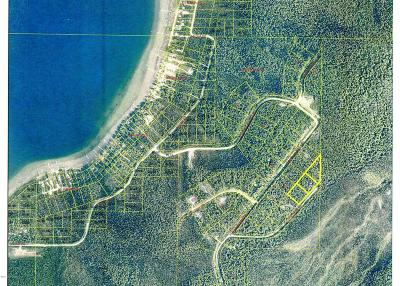Salcha AK Residential Lots & Land For Sale: $9,500