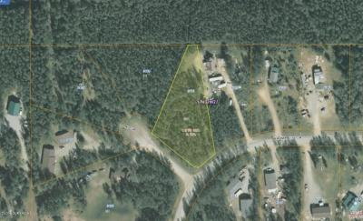Wasilla Residential Lots & Land For Sale: 3925 Bay Circle