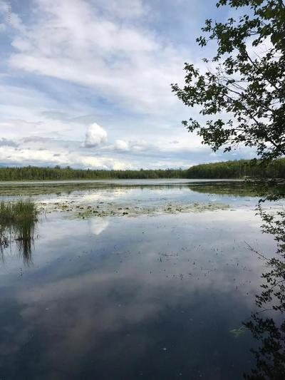 Wasilla Residential Lots & Land For Sale: 4731 Lucy Lake Road