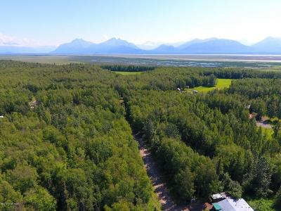 Wasilla Residential Lots & Land For Sale: 4620 Lucy Lake Road