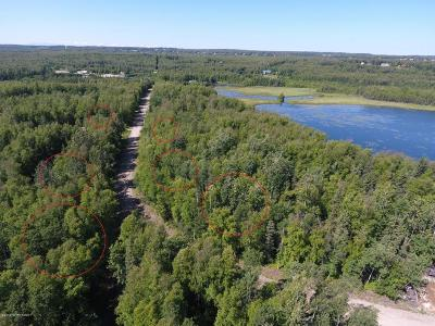 Wasilla Residential Lots & Land For Sale: 4640 Lucy Lake Road