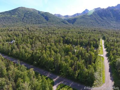 Palmer AK Residential Lots & Land Sold: $64,000