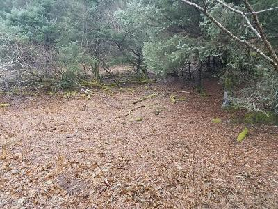 Kodiak AK Residential Lots & Land For Sale: $82,000