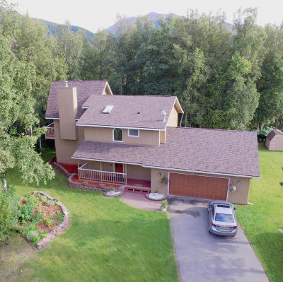 Chugiak Single Family Home For Sale: 23920 Immelman Cir