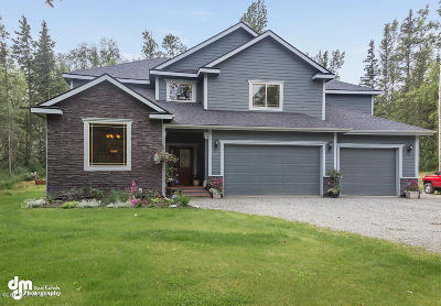 Wasilla Single Family Home For Sale: 2670 N Hematite Drive