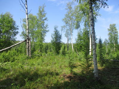 Big Lake Residential Lots & Land For Sale: Tr F Echo Lake Road