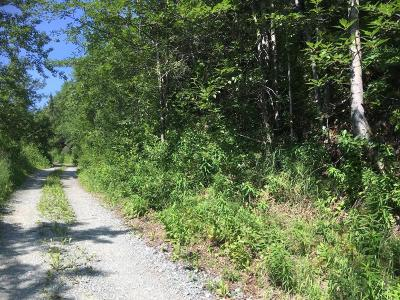 Eagle River Residential Lots & Land For Sale: 19831 Meadow Canyon Drive