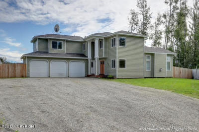 Wasilla Single Family Home For Sale: 7852 W Bassam Circle