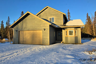 Wasilla Single Family Home For Sale: 4215 S Gon Fishin Drive