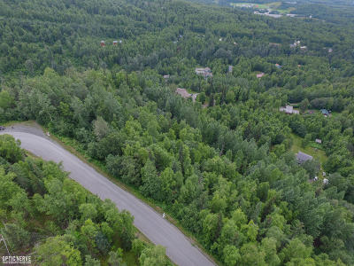 Chugiak Residential Lots & Land For Sale: LT1 BLK 16 Sleepy Hollow