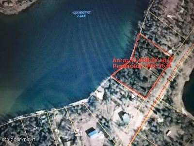 Residential Lots & Land For Sale: 51635 Georgine Lake Road