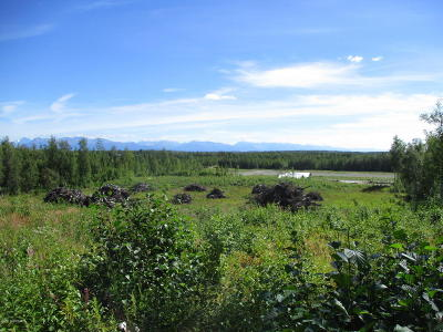 Big Lake Residential Lots & Land For Sale: 14118 Aero Lane