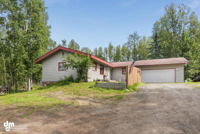 Chugiak Single Family Home For Sale: 17791 Birchtree Street