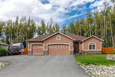 Wasilla Single Family Home For Sale: 7151 S Frontier Drive