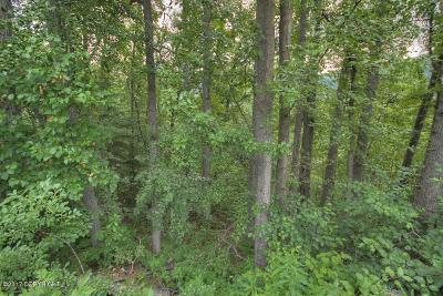 Eagle River Residential Lots & Land For Sale: 22849 Myrtle Drive